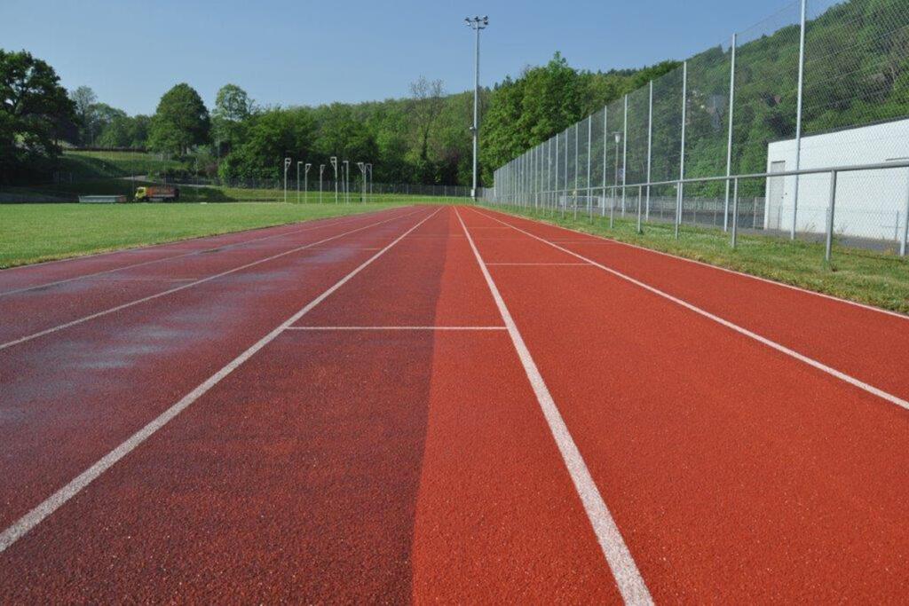 Flächenreinigung Sportplatz